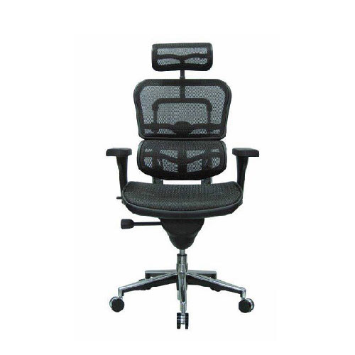 Ergohuman Office Chair in Lagos Nigeria - Mcgankons Office Furniture Store