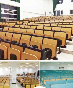 Lecture Hall Seating 1